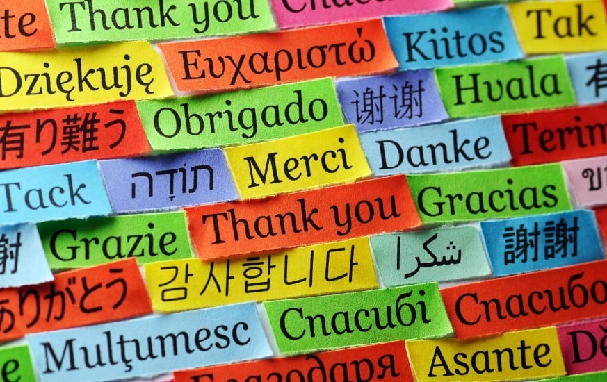 Teaching English and Learning Languages