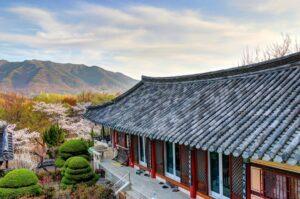 Teach English in rural South Korea
