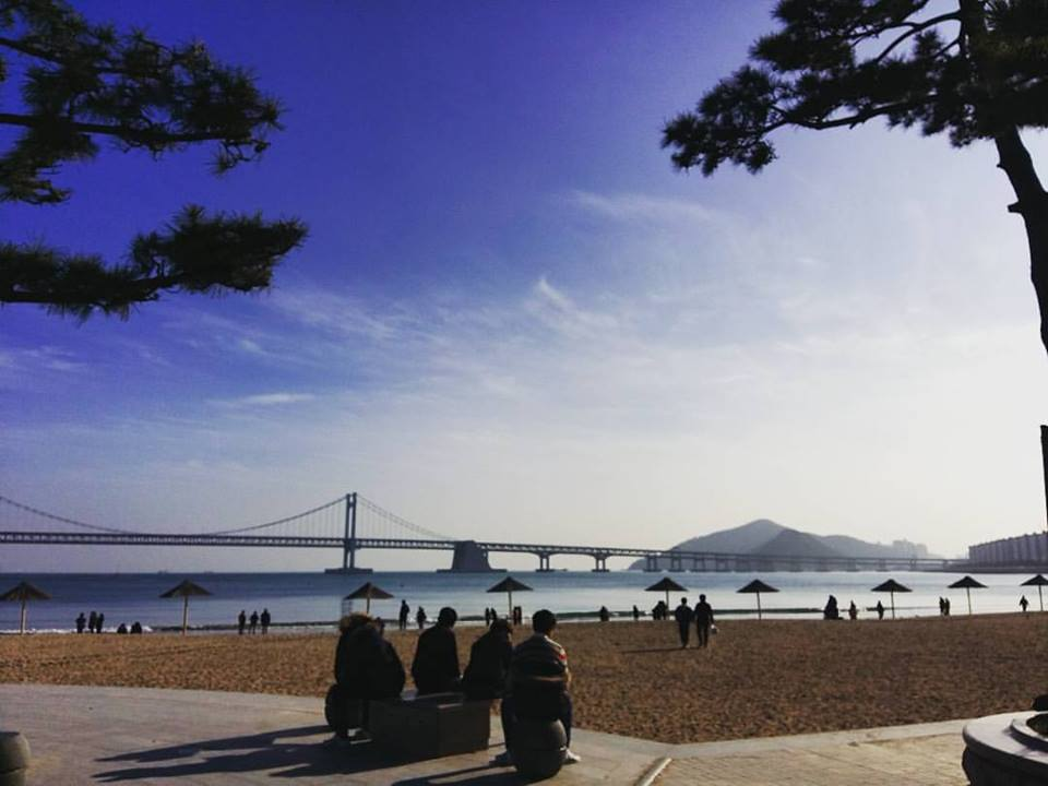 Busan night life for peple teaching English