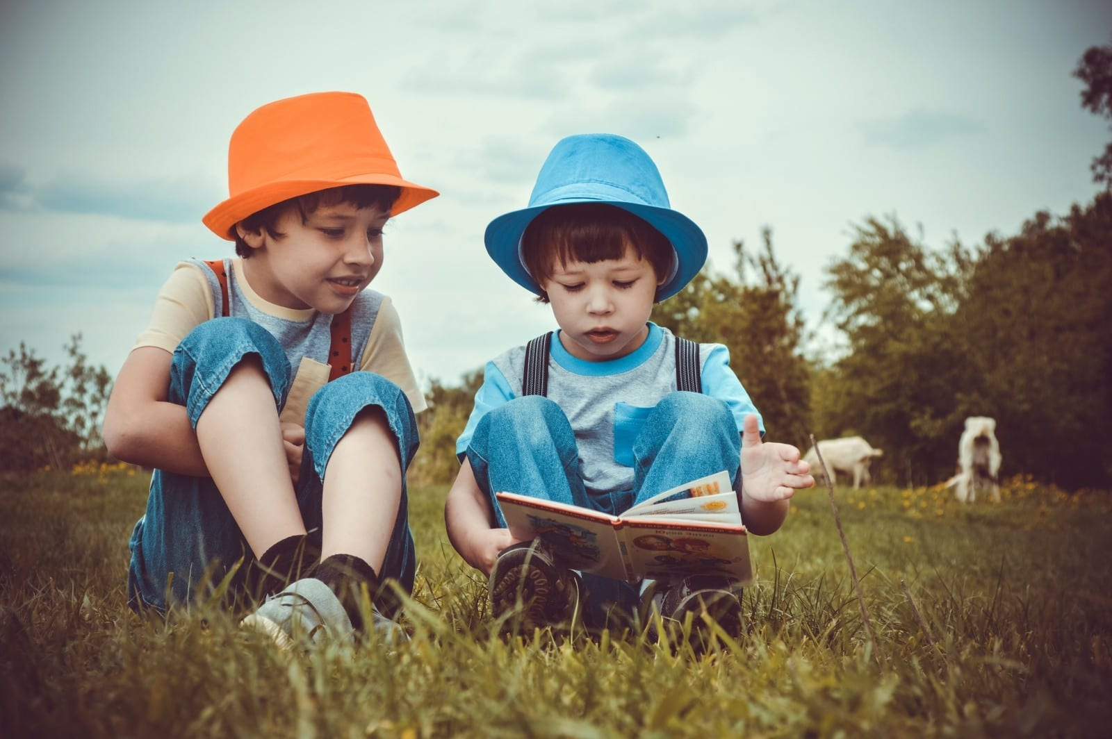 Writing Skills activity for English teachers